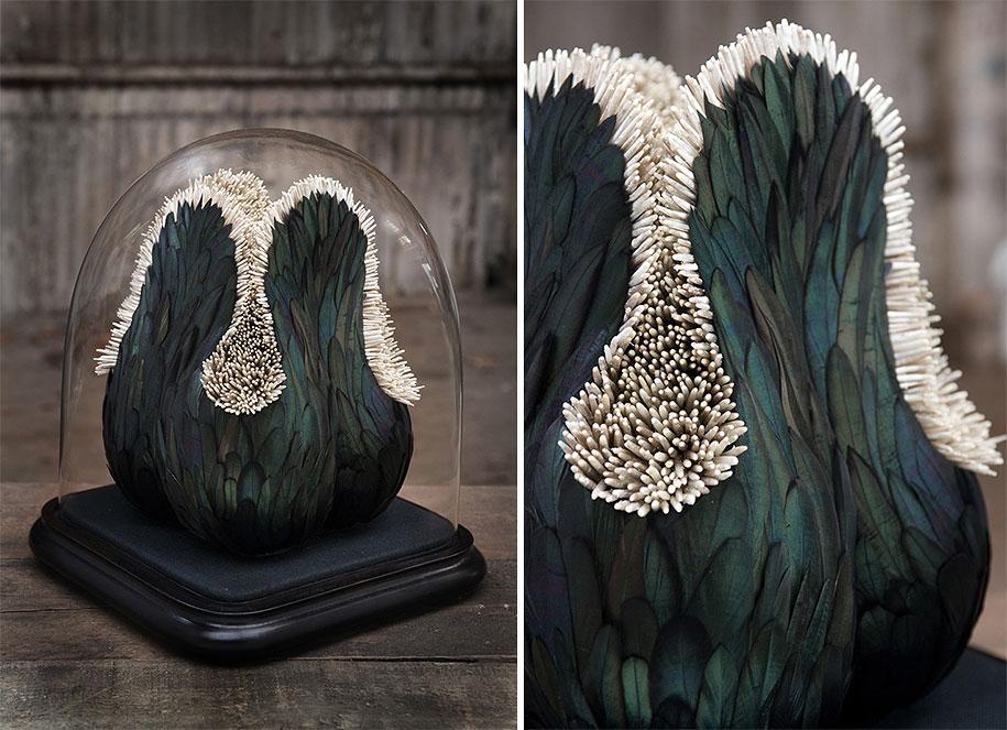 bird-feather-sculpture-art-kate-mccgwire-20
