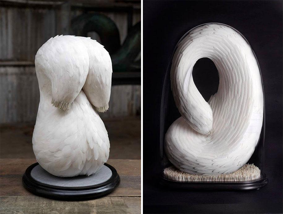 bird-feather-sculpture-art-kate-mccgwire-27