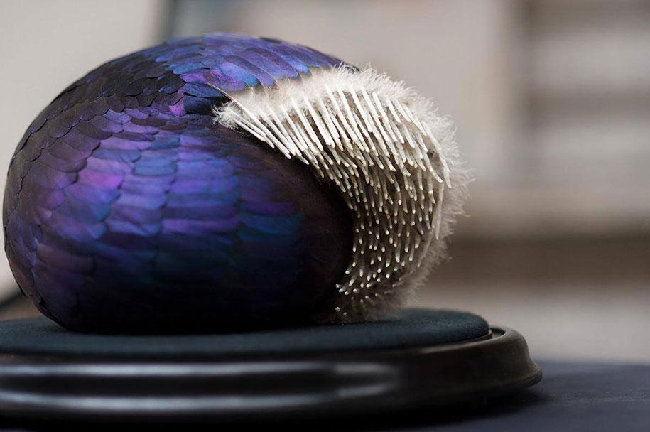 bird-feather-sculpture-art-kate-mccgwire-6