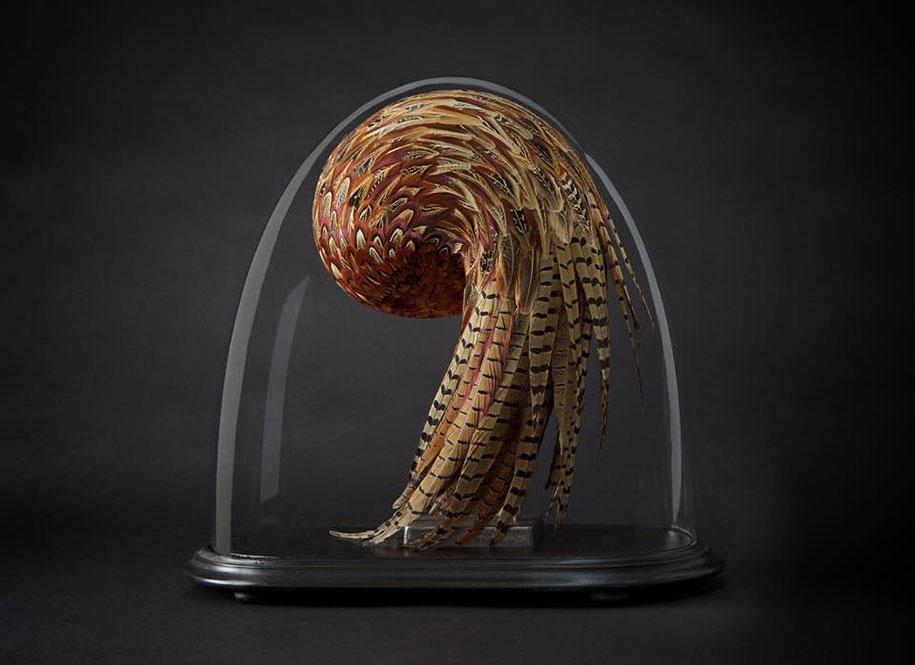 bird-feather-sculpture-art-kate-mccgwire-8