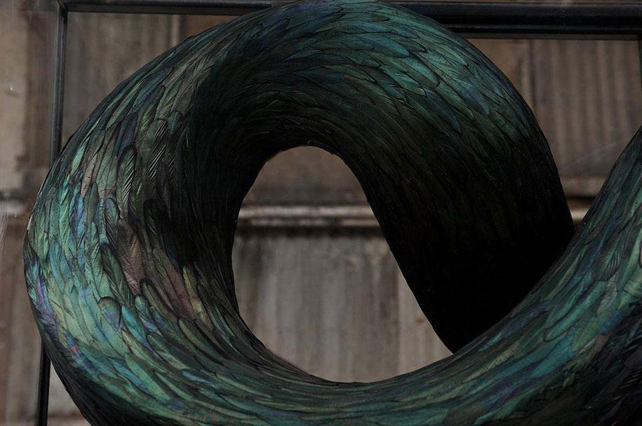 bird-feather-sculpture-art-kate-mccgwire-9