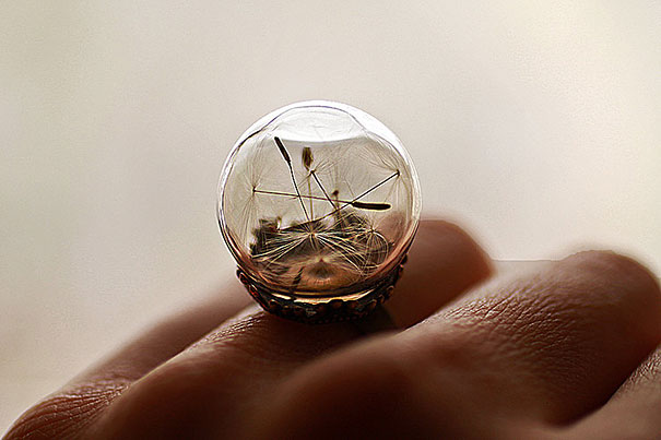 glass-globe-terrarium-ring-designs-9