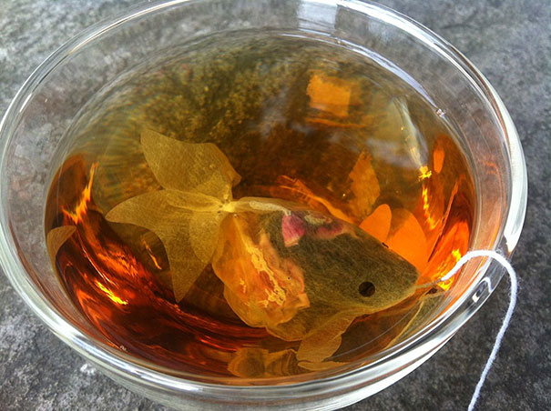 gold-fish-tea-bag-design-charm-villa-1