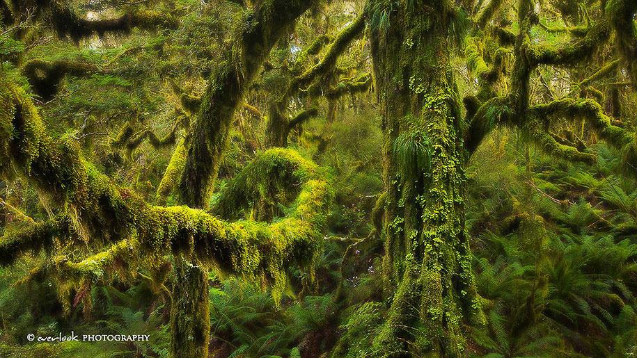 landscape-photography-partents-dylan-toh-marianne-lim-16
