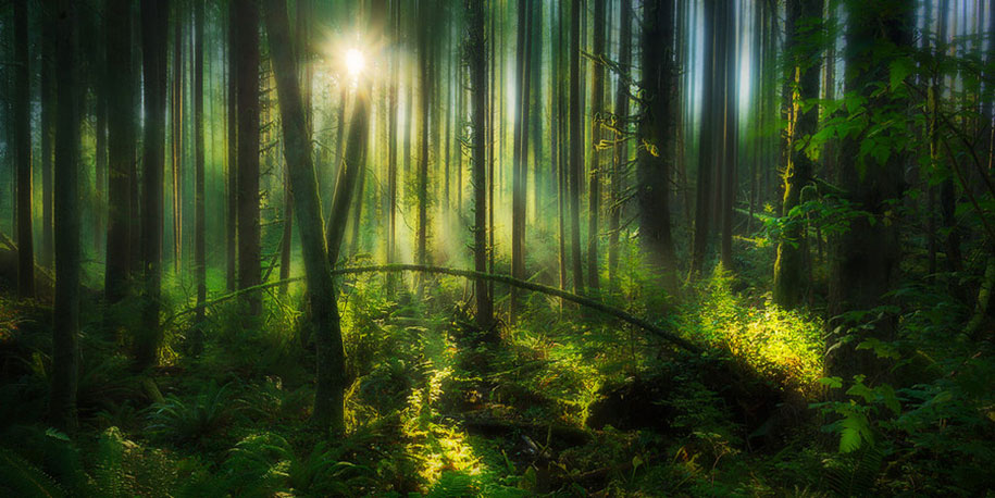 landscape-photography-partents-dylan-toh-marianne-lim-8
