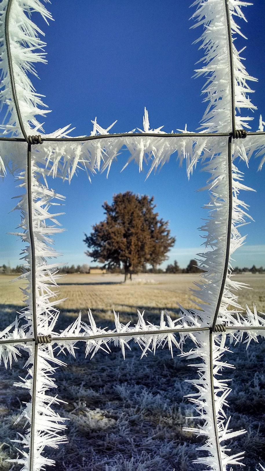winter-snow-natural-ice-art-14