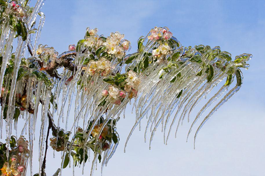 winter-snow-natural-ice-art-22