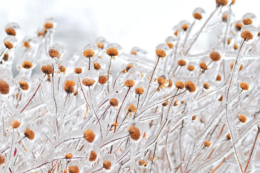 winter-snow-natural-ice-art-24