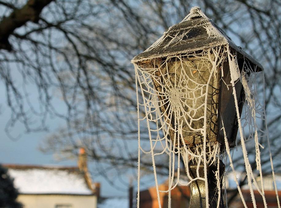winter-snow-natural-ice-art-9