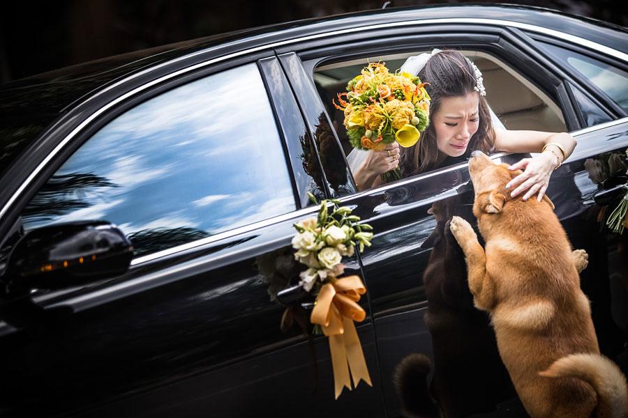 creative-wedding-photography-2014-ispwp-contest-8