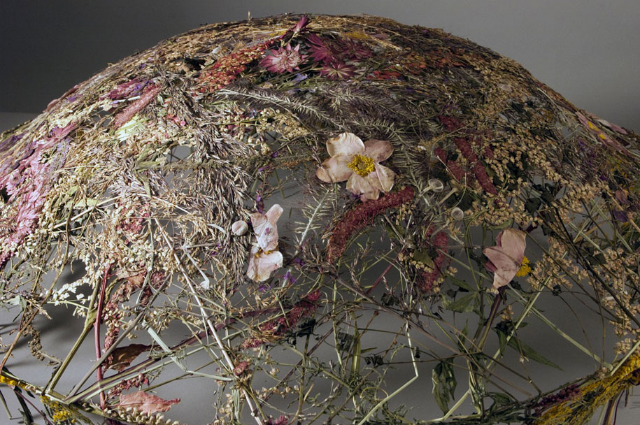 dried-flowers-pressed-design-ignacio-canales-aracil-9