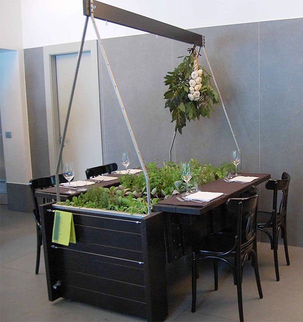 plants-green-interior-design-ideas-26