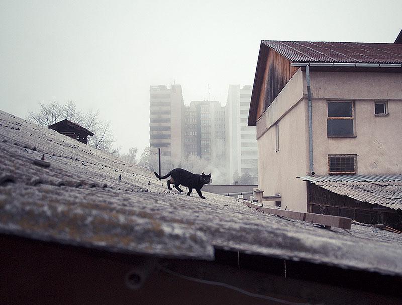 romania-villages-quirky-photography-hajdu-tamas-5
