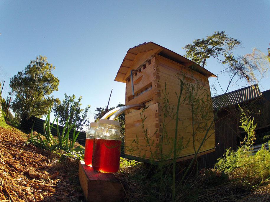 bees-easy-honey-tap-flow-hive-stuart-cedar-anderson-9