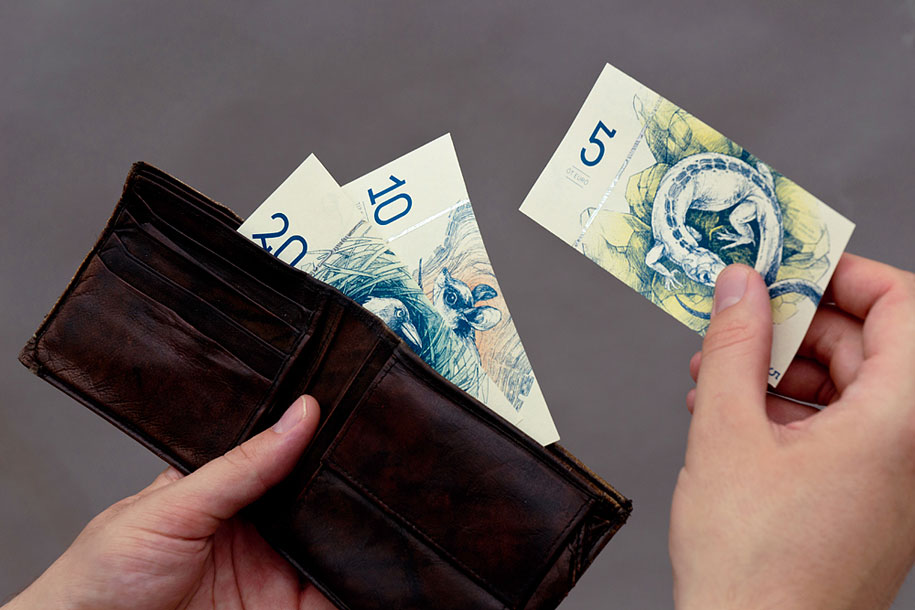 hungarian-money-concept-paper-euro-barbara-bernat-17