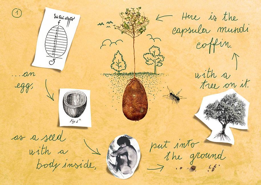 sacred-memory-forest-biodegradable-burial-pod-capsula-mundi-2