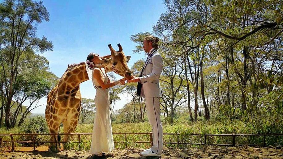 couple-wedding-around-the-world-travel-cheetah-rhian-6
