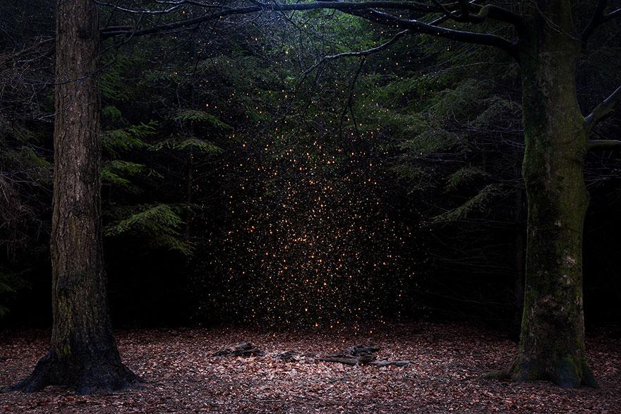 fairy-tale-photograhy-ellie-davis-21