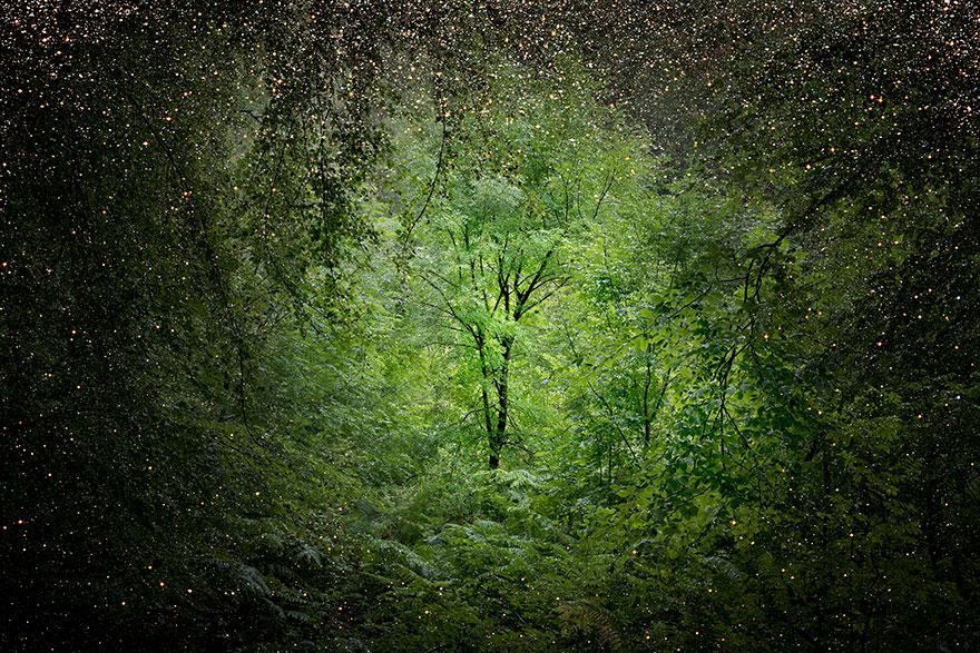 fairy-tale-photograhy-ellie-davis-4