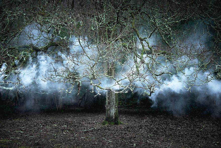 fairy-tale-photograhy-ellie-davis-8