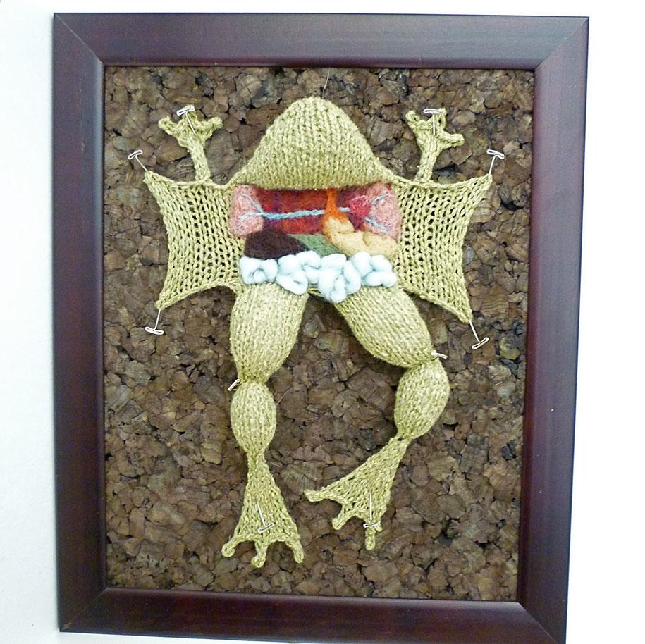 knit-animal-dissection-aknitomy-emily-stoneking-07