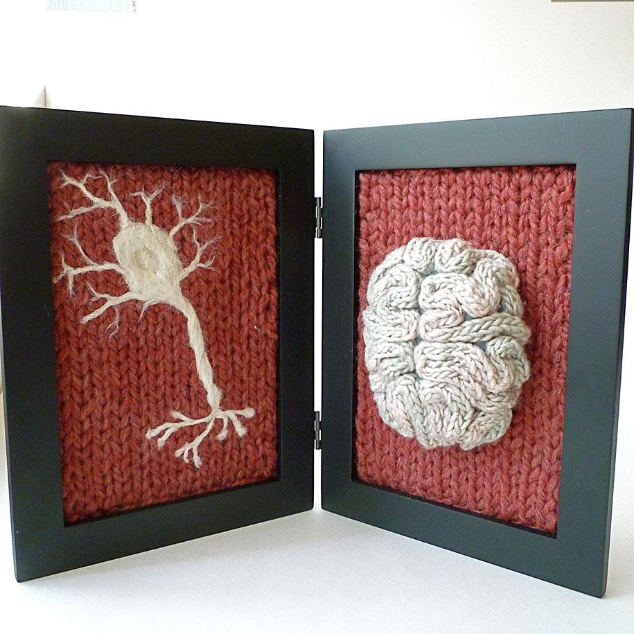 knit-animal-dissection-aknitomy-emily-stoneking-15