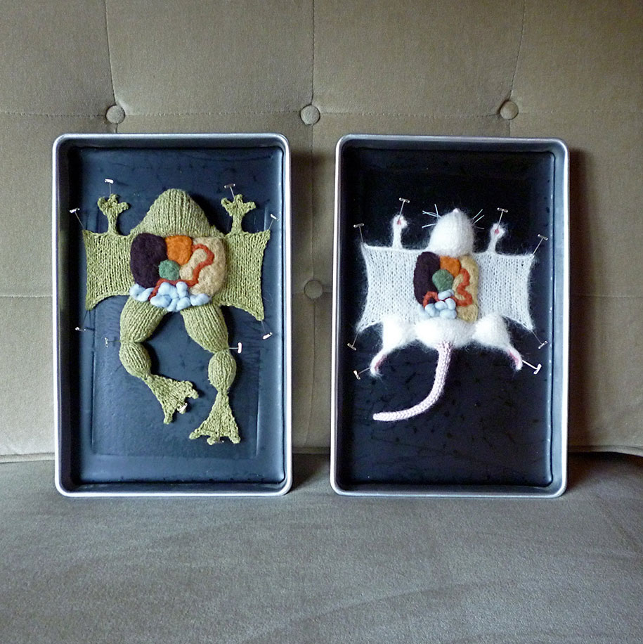 knit-animal-dissection-aknitomy-emily-stoneking-16
