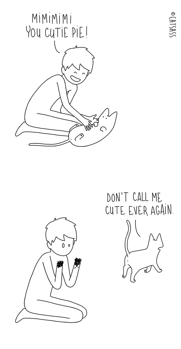 mean-cat-comic-strip-catsass-claude-combacau-13