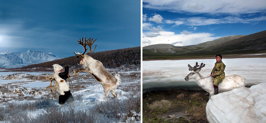 mongolia-tribe-reindeer-people-hamid-sardar-afkhami-3