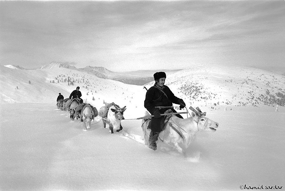 mongolia-tribe-reindeer-people-hamid-sardar-afkhami-7
