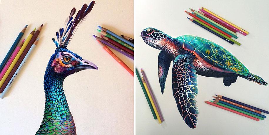 realistic-colored-pencil-drawings-morgan-davidson-1