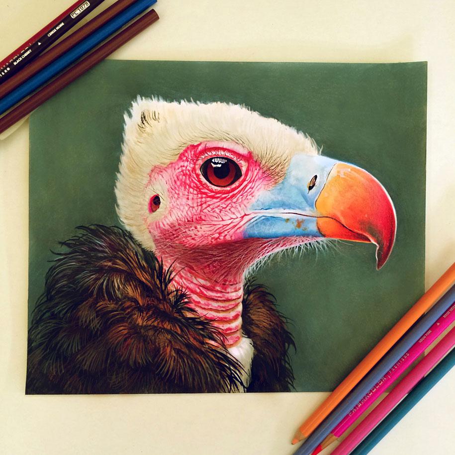 realistic-colored-pencil-drawings-morgan-davidson-6