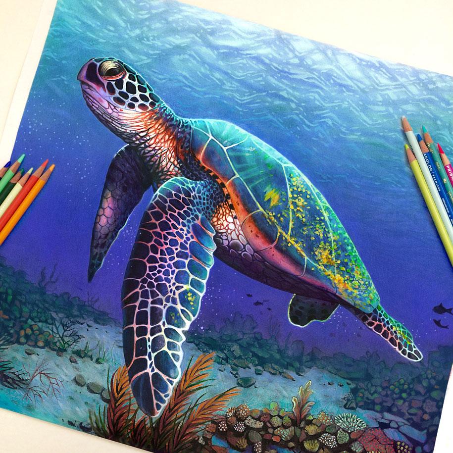 realistic-colored-pencil-drawings-morgan-davidson-7