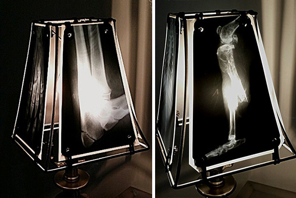 animal-scan-reuse-xray-lampshade-spike-vain-xrayvisiondesigns-4