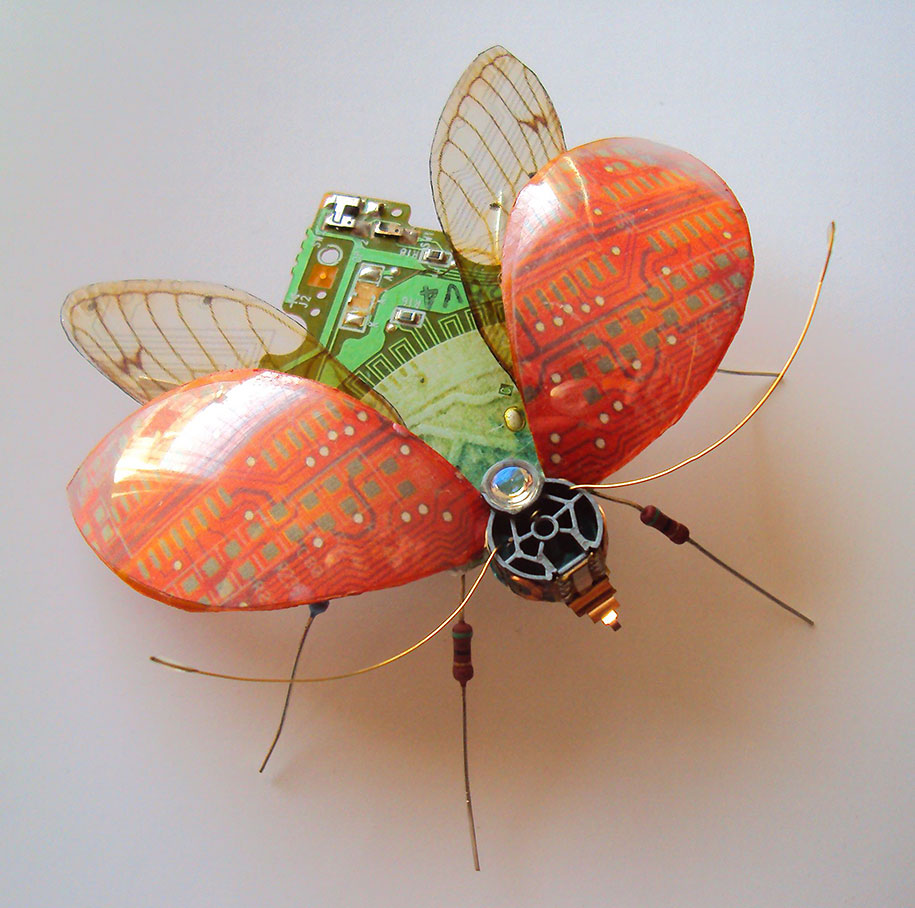 circuitboard-computer-component-bugs-julie-alice-chappell-17