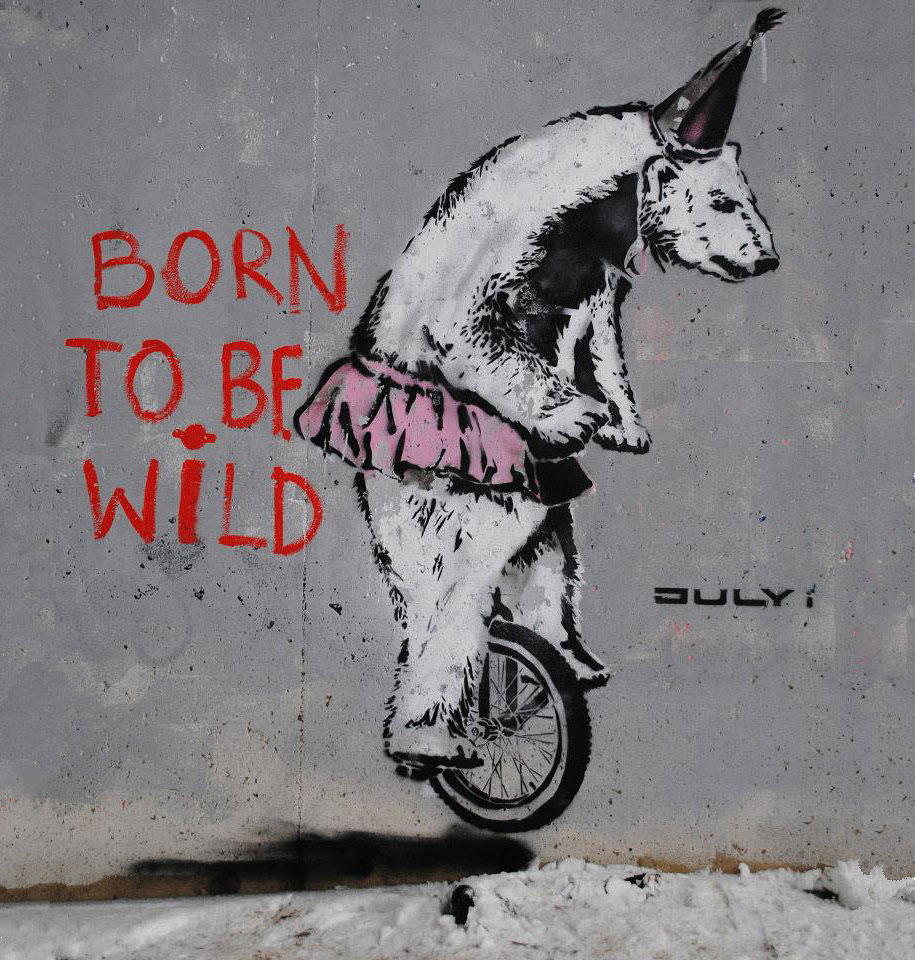 environmental-graffiti-street-art-01