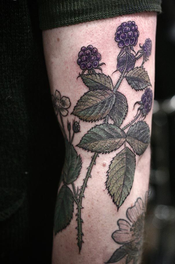 flower-plant-botanical-tattoos-alice-carrier-53