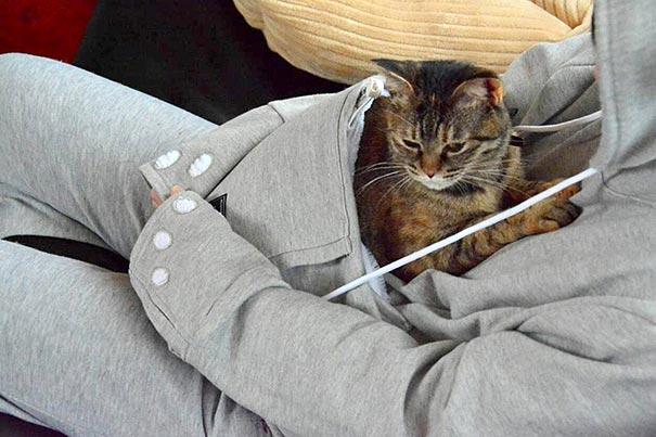 cat-pouch-pocket-hoodie-mewgaroo-14