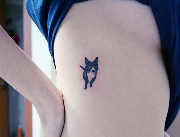 cat-tattoos-trend-illegal-parlors-south-korea-19