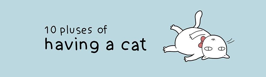 comic-illustrations-pluses-benefits-having-cat-lingvistov-1