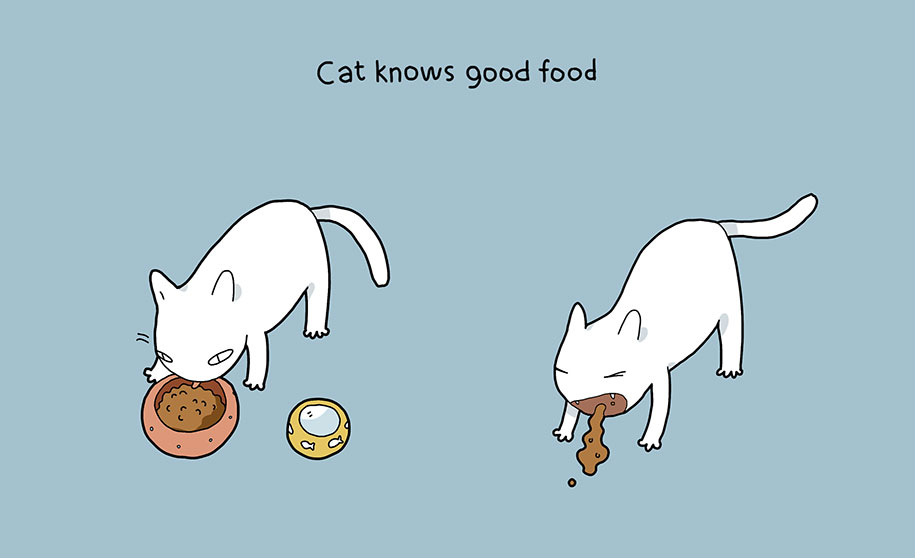 comic-illustrations-pluses-benefits-having-cat-lingvistov-8