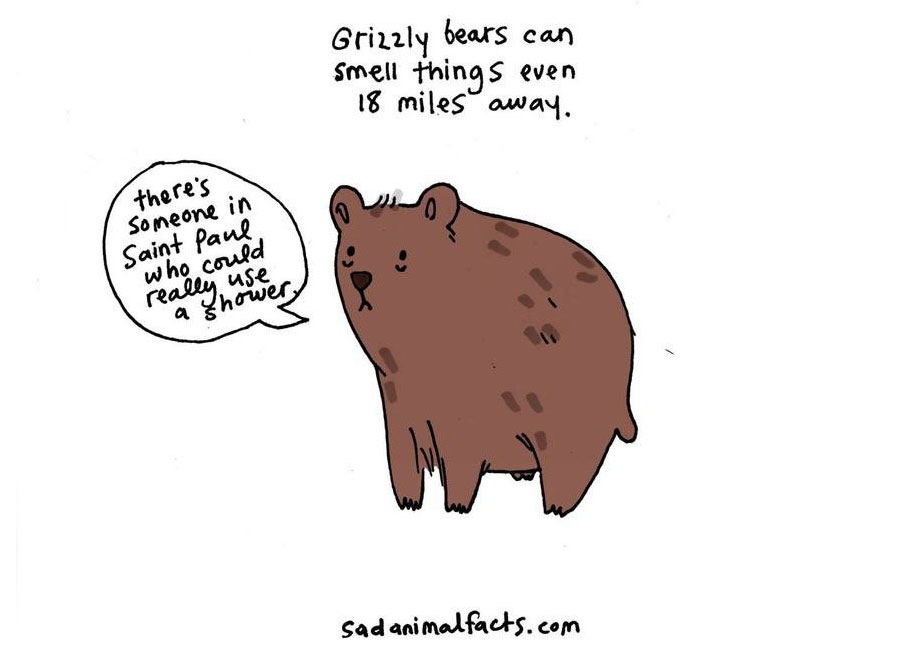 cute-illustrations-drawings-sad-animal-facts-brooke-barker-36