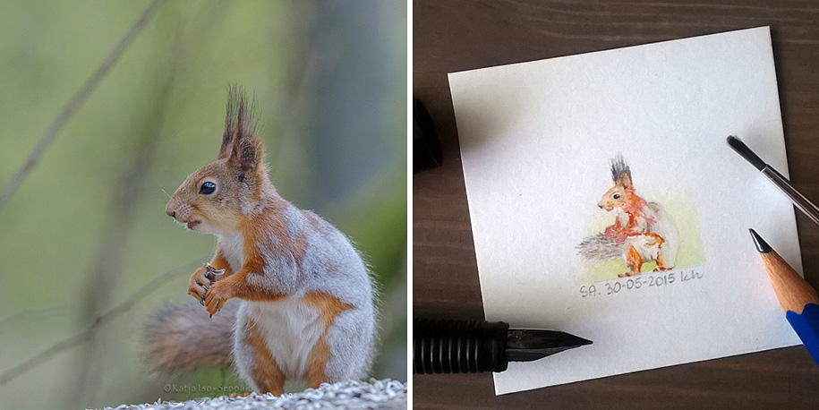 daily-instagram-inspired-art-drawings-tiny-spring-kasia-haldas-16