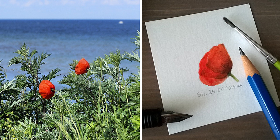 daily-instagram-inspired-art-drawings-tiny-spring-kasia-haldas-17