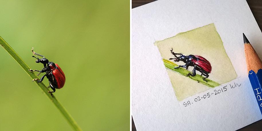 daily-instagram-inspired-art-drawings-tiny-spring-kasia-haldas-6