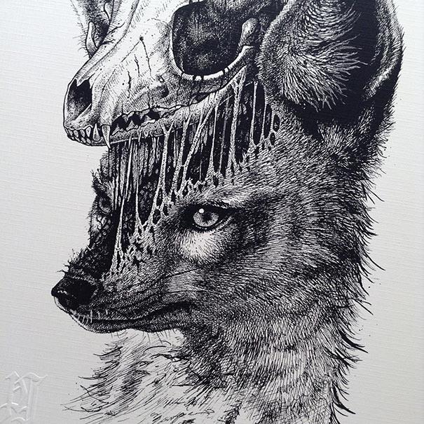 eerie-gruesome-gothic-black-white-animal-skull-art-paul-jackson-19