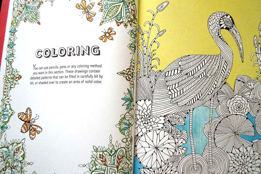 adult-coloring-book-antistress-creative-therapy-hannah-davies-richard-merritt-jo-taylor-6