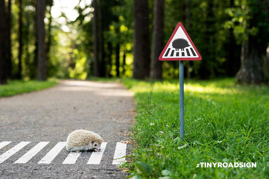 city-animal-crossing-signs-tiny-roadsign-clinic212-5