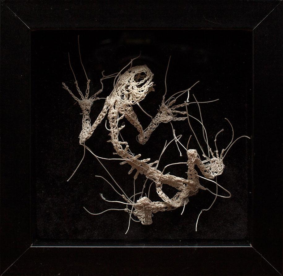 disturbing-crocheted-yarn-glue-animal-skeletons-caitlin-mccormack-4
