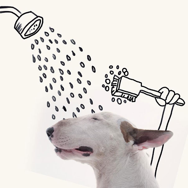 dog-interactive-illustrations-jimmy-choo-rafael-mantesso-13